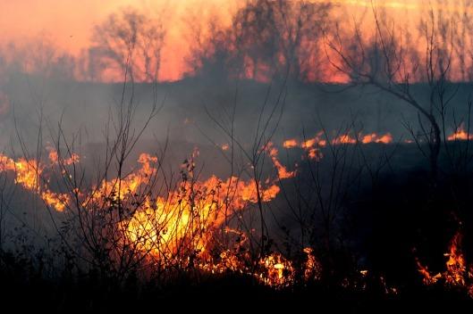 fire-1265718_960_720
