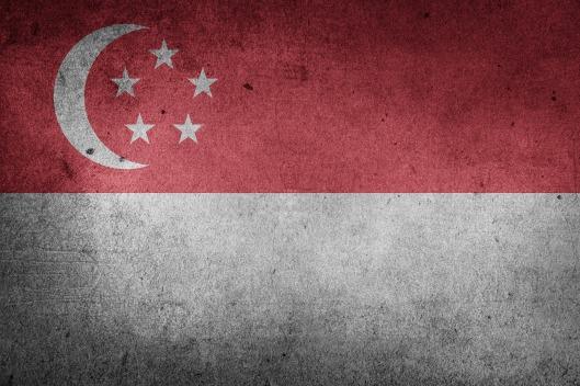 singapore-1184101_1920.jpg